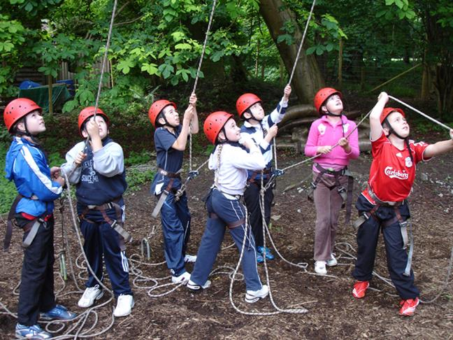 Outdoor Activities - High Ropes in the Forest of Daen